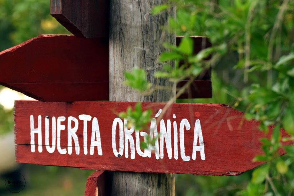 FOTO PRINCIPAL DE LA SECCIÓN
