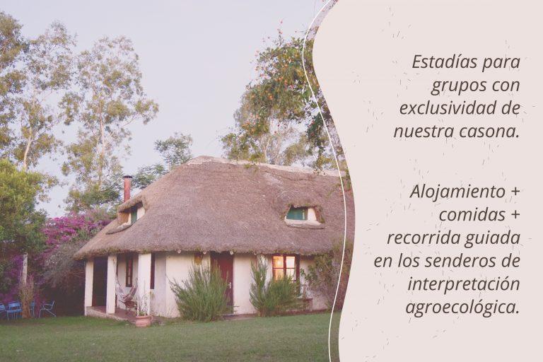 turismo responsable carrusel_Mesa de trabajo 1 copia 44